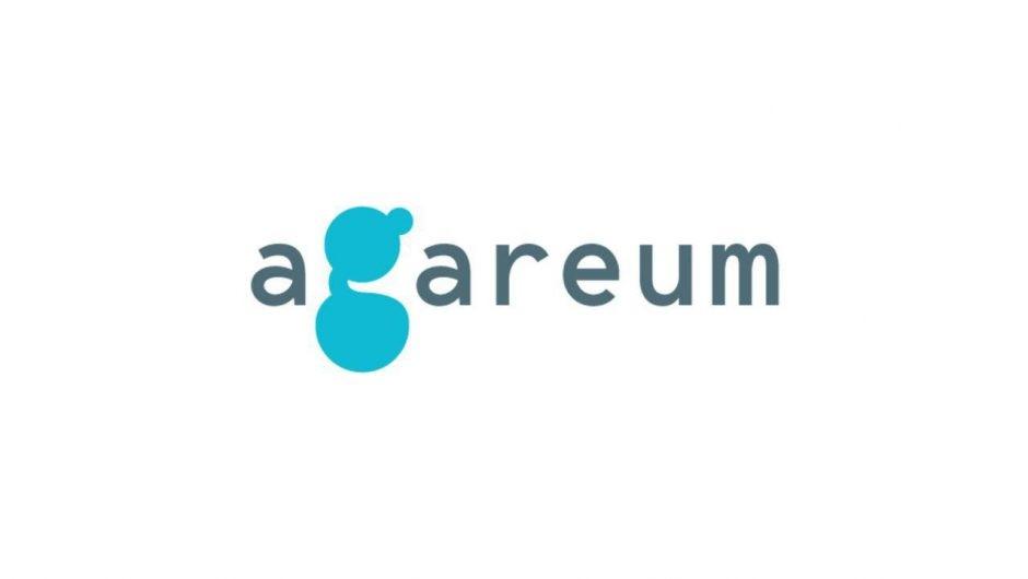 Обзор ICO-проекта Agareum: отзывы пользователей о блокчейн-игре