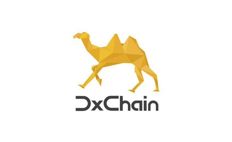 """""""Большие данные встречают блокчейн"""": обзор ICO DxChain и отзывы трейдеров о проекте"""