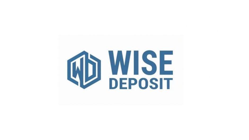 Обзор WiseDeposit: отзывы об инвестиционном проекте, его перспективность и эффективность
