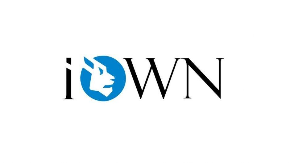 iOWN – обзор ICO-проекта, способного упростить процесс инвестирования