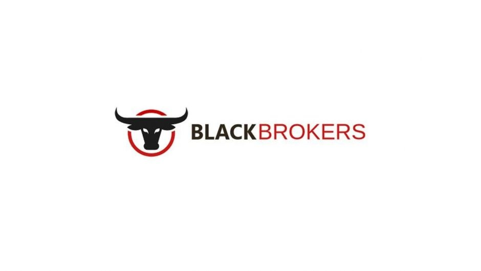 Чарджбэк-сервис Blackbrokers: обзор компании