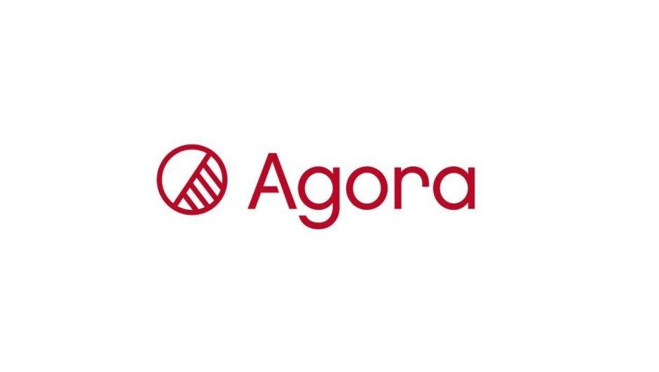 Обзор ICO-проекта Agora: что говорят трейдеры о криптовалюте Vote Token