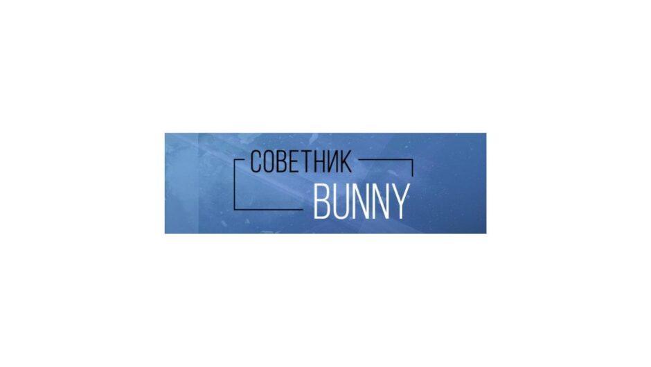 Робот-советник Bunny: обзор и отзывы