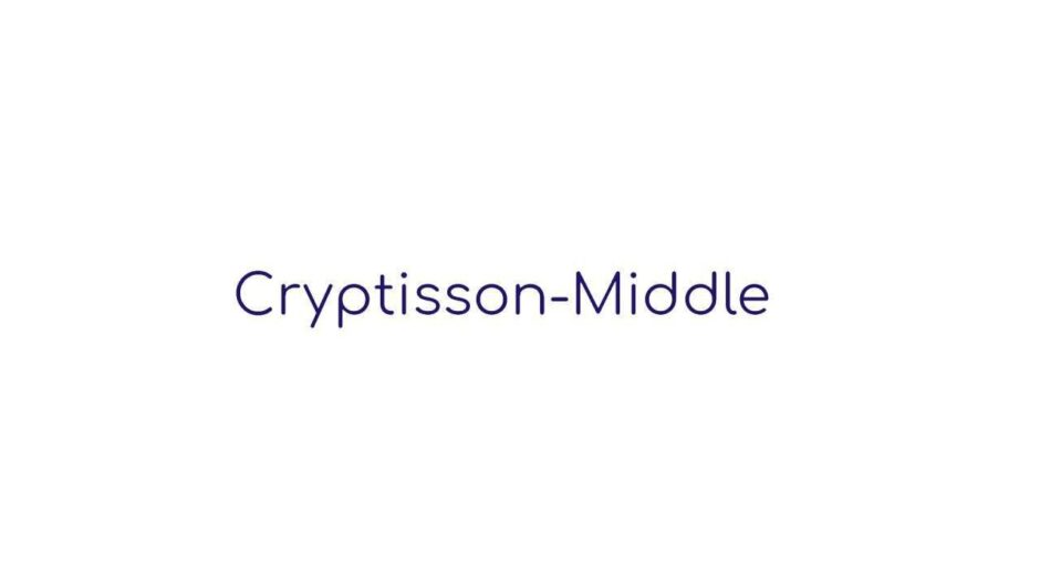 Хайп-проект Cryptisson-Middle: обзор и отзывы о проекте