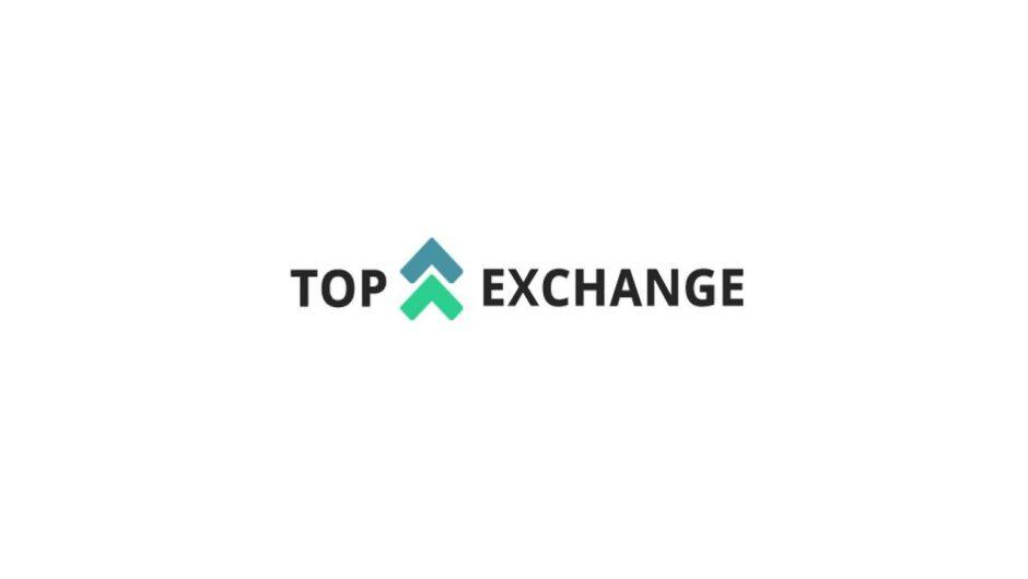 Российский обменник Top-Exchange: обзор и отзывы о выгодности