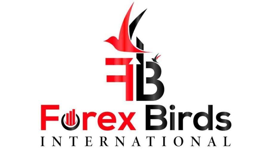 Экспертный обзор брокера Forex Birds: анализ деятельности, отзывы