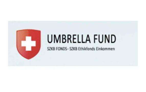 UmbrellaFund отзывы о работе псевдо-проекта