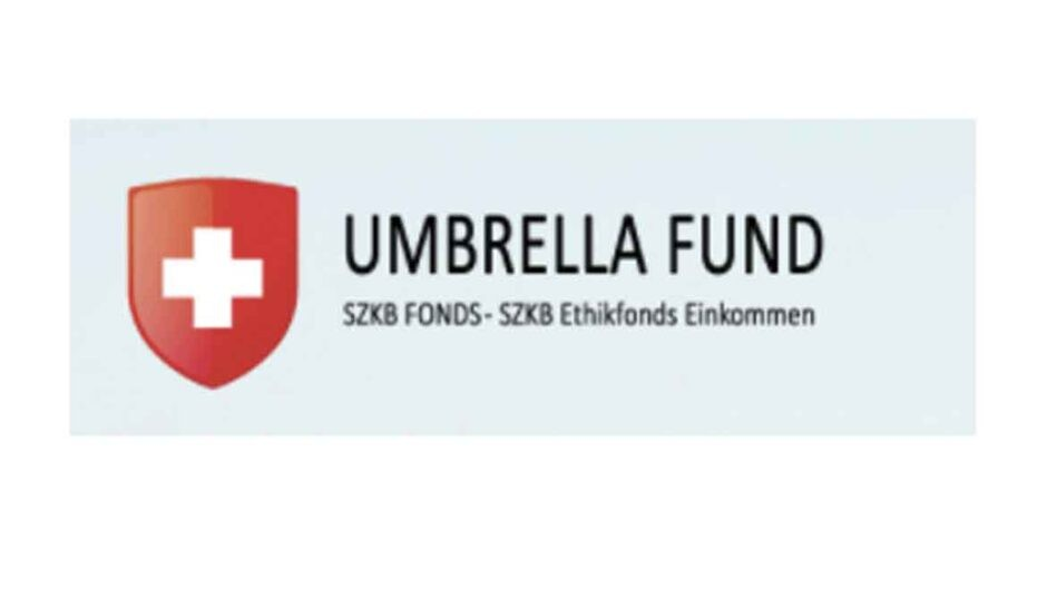 Инвестиционная онлайн-платформа Umbrella Fund: обзор проекта