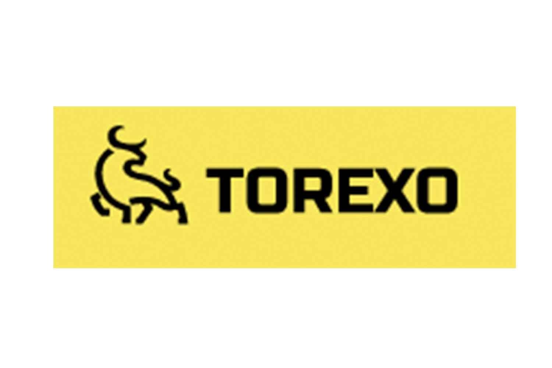 Torexo Finance: отзывы инвесторов и детальный обзор условий